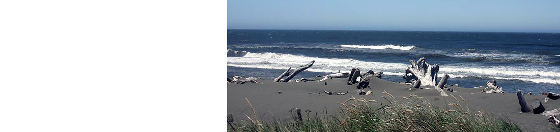 Gold Beach RV Park